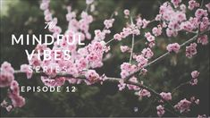 Mindful Vibes - Episode 12 (Jazz Hop Mix) [HD]