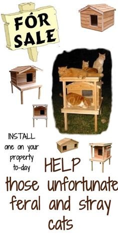 33 best outside cat house images dog cat doggies pets rh pinterest com