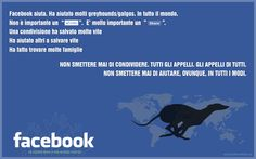 Facebook è una possibilità Facebook is a chance