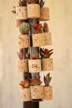 CUSTOM Order for Lauren Succulent Cork Magnets. $180.00, via Etsy.
