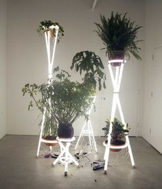 Alejandro Almanza Pereda * Deco Findings * The Inner Interiorista Neon Lighting, Lighting Design, Neon Rosa, Marquee Lights, Marquee Letters, Light Installation, Light Art, Plant Hanger, Decoration