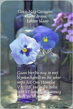 Evening Greetings, Afrikaanse Quotes, Good Night Blessings, Goeie Nag, Christian Messages, Good Night Quotes, Special Quotes, Morning Greeting, Strong Quotes