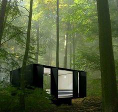 Casa moderna e da sogno costruita nei boschi n.05