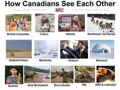 Meanwhile, in Canada. Canada Quotes, Canada Memes, Canada Funny, O Canada, Canada Humor, Canadian Things, I Am Canadian, Funny Canadian Memes, Funny Memes