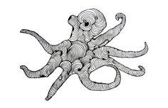 Octopus - Sophia Sousa