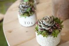 「atelier tokiiro」の画像検索結果