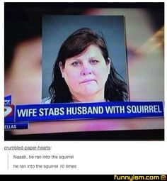 We need to regulate squirrels.