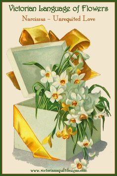 Victorian Language of Flowers - Narcissus