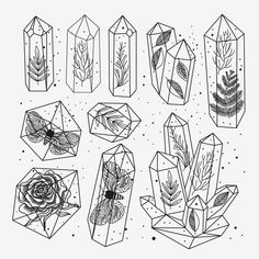 Stock vector of 'Set of hand drawn line art crystals and leafs, moths, rose inside gems, isolated objects. Black and white transparent terrariums.' illustration black and white Art Sketches, Art Drawings, Random Drawings, Drawings Of Plants, Random Doodles, Ink Doodles, Cool Doodles, Tattoo Sketches, Graffiti Art