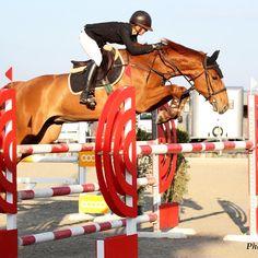 inkachou #horseloversofinstagram #jumping #horse #photobujard @jessica_hirt98 @boudah_marechaleri Captain America, Horses, Superhero, Fictional Characters, Instagram, Art, Capitan America, Craft Art, Kunst