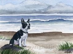 BOSTON TERRIER On The BEACH Dog Painting ART Print Signed DJR #Impressionistic