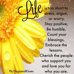 Life Is Too Short To Argue and Stress