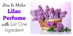 How to Make Lilac Perfume with Just One Ingredient Mmmm, I've got to try this next year when the lilacs are in bloom!