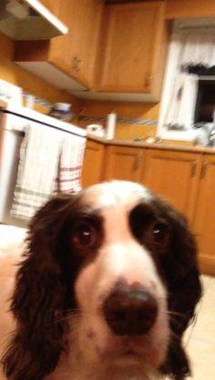 My puppy dog ❤️❤️❤️I love him