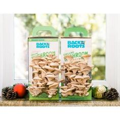 Back to the Roots Organic Mushroom Grow Kit -Discovery Edition - The Home Depot Growing Mushrooms At Home, Mushroom Grow Kit, Mushroom Spores, Stem Curriculum, Organic Protein, Planting Vegetables, Vegetable Garden, Garden Plants, Veggies