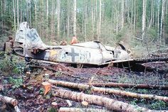 Discovering an Intact Luftwaffe FW190 In A Forest Clearing Outside St Petersburg (Watch)