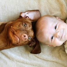 Just adorable! Look at the sweet faces on the happy baby and dog (the dogs ear! so cute).
