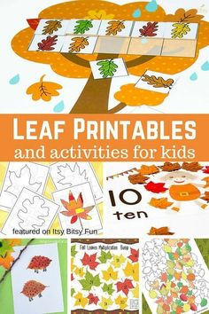 Free Leaf Printables for Kids! Fun ways to work on math, colors and more with these leaf activities and printables for preschool and kindergarten kids this fall!