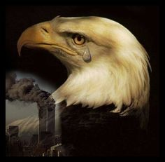 911 We will never forget it. We will never get over it. We Will Never Forget, Lest We Forget, Don't Forget, Photo Aigle, Eagle Images, Eagle Pictures, Color Pictures, 911 Memorial, 11. September