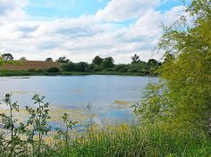 Ludlow Pond #motherofnecessity