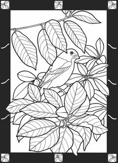 Leaves of the Seasons Stained Glass Coloring Book