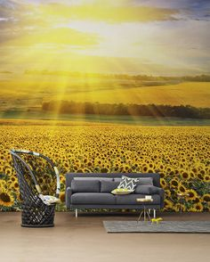 Sunflowers Wall Mural by PIXERS Nature Inspired Eye Deceiving Wall Murals to Make Your Home Look Bigger