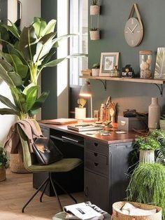 die besten 25 kaki pflanzen ideen auf pinterest kaki farbe gro e zimmerpflanzen drinnen und. Black Bedroom Furniture Sets. Home Design Ideas