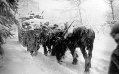 HHC, 3d Battalion, 504th Parachute Infantry, moving thru heavy snow – Bulge, January 1945