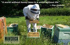 Apparel Accessories Hip Hop Baseball Caps Funny Men Hat Cap Black Bee Whisperer Beekeeper Hat Honey Pollen Gifts Men