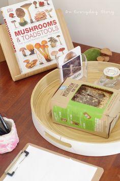 Mushroom Inquiry - How Do Mushrooms Grow?  An Everyday Story: Inquiry-based Homeschooling
