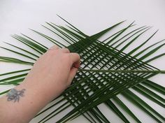 Place the one palm leaf on the other