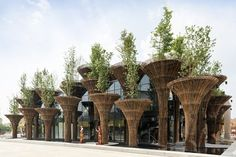 """These Designs Take Bamboo Infrastructure to a New Level - Photo 1 of 18 - The Vietnam Pavilion at the Milan Expo which comprised of 46 bamboo """"trees. Bamboo Architecture, Architecture Portfolio, Futuristic Architecture, Chinese Architecture, Architecture Office, Expo Milano 2015, Expo 2015, Gazebos, Bamboo Structure"""