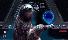 death star sloth