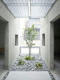 """House in Koamicho / Suppose Design Office Completed in 0 in Hiroshima-shi, Japan. Images by Toshiyuki Yano. When we normally feel \""""interior\"""" or \""""exterior\ Interior Garden, Home Interior Design, Interior And Exterior, Tree Interior, Interior Ideas, Artistic Tree, Suppose Design Office, Deco Zen, Internal Courtyard"""