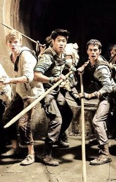 Read Your sport # 32 from the story The Maze Runner Preferences by two_people (Jente en Danique) with 2,694 reads. minh...