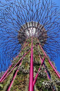 Les jardins du futur? Sur la revue en ligne Office et culture