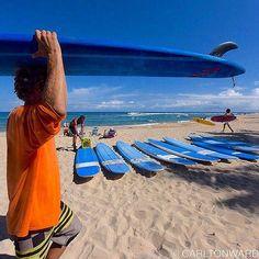Photo by @CarltonWard // Surf lessons on the North Shore of Oahu Hawaii. #surf #Hawaii Hotels-live.com via https://instagram.com/p/6vpim3IMdU/