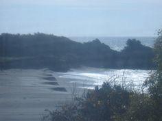 Gualala Beaches