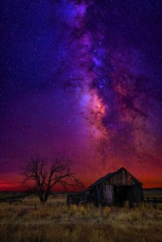 Limited Edition Fine Art Photograph by Peter Lik. Landscape photo of the stars and Milky Way in the sky above a weathered shack and old tree in a field in Oregon.