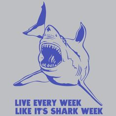 """Live Every Week Like It's Shark Week"""