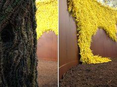 BAUM by Wona Bae - Gold Medal winner at the Melbourne International Flower & Garden Show 2011. #wonabae #Floristry