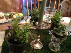 Moss and potted lobelia in thrift store glassware