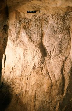 Wall carving in Roc-aux-Sorciers (Sorcerers' Rock), an Upper Paleolithic rock shelter site dating to the mid-Magdalenian cultural stage, ca 14000 yBP in Angles-sur-l'Anglin, France.