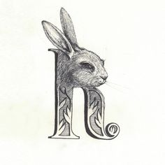 RABBIT: People born in the year of the rabbits are stubborn & sensitive. That's me. :)