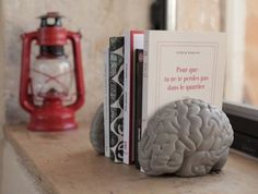 Perfect for the brains of the family - Gray Matter Concrete Bookends - available at www.dorisbrixham.com