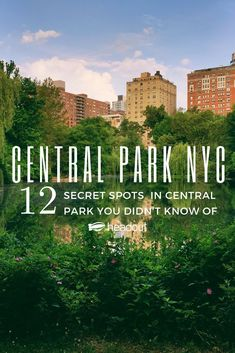 This Guide to Central Park New York will cover all that you need to know before you step foot in the lungs of New York. In the concrete jungle of the City that Never Sleeps, the Central Park is a breath of fresh air that is enjoyed by all alike. New York City Vacation, New York City Travel, New York Trip, Brisbane, Melbourne, Cairns, Central Park New York, York Things To Do, Parque Natural
