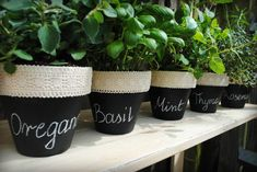Herb pots covered with chalkboard paint Herb Garden, Home And Garden, Herb Pots, Chalkboard Paint, Patio Design, Annie Sloan, Gardening Tips, Garden Landscaping, Diy And Crafts