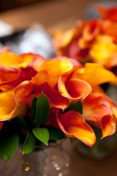 Love this color scheme for the floral arrangements! #Minnesota #weddings #Minneapolisfloraldesign