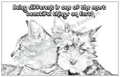 7 unique 11 x 17 inch posters in each pack, created from original animal photographs and ready for your child to color. Animal Posters, Motivational Sayings, Most Beautiful, Photographs, Child, Animals, Boutique, Craft, Color