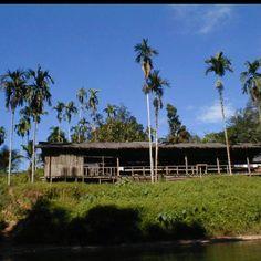 Longhouse. Borneo.